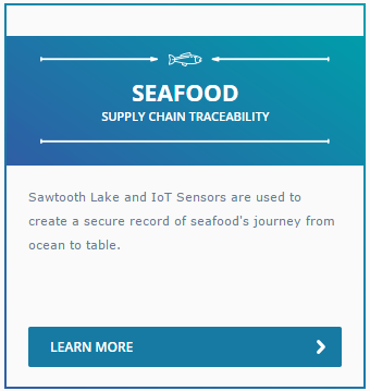 Seafood Case Study in Supply Chain Traceability